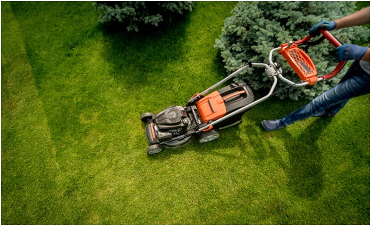 Mowing Tips for A Healthy Lawn